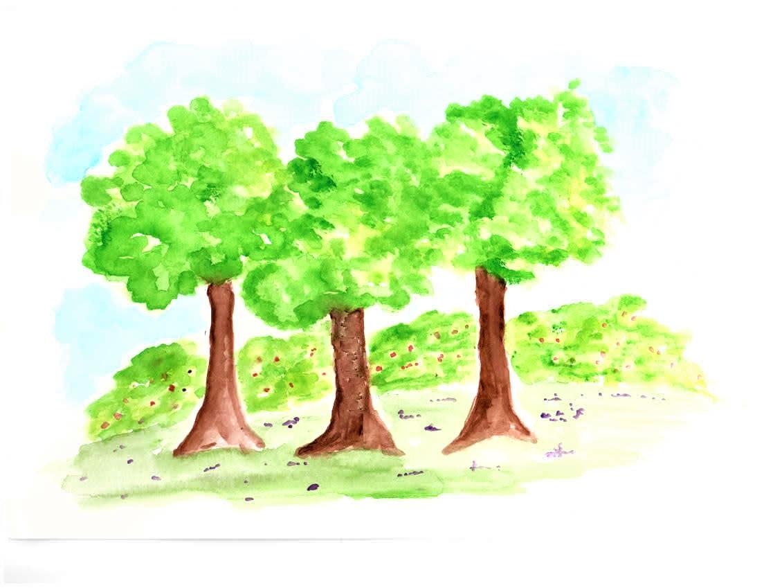 Tree community.jpg